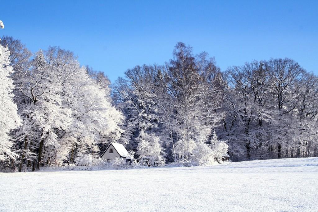 вірш про зиму 2