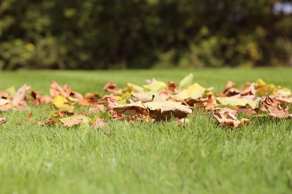 вірш про осінь Вадима Крищенка